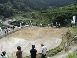 神山13490.JPG