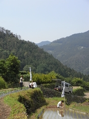 神山13533.JPG