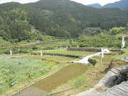 神山13539.JPG