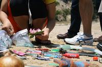beachcoaming.jpg