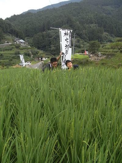 090815神山10.JPG